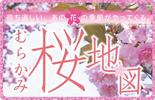 むらかみ桜地図